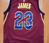 Camiseta Nike Lebron James