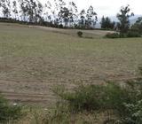 Venta de terreno en Cotacachi Quiroga sector Morochos