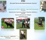 Escuela Técnica De Adiestramiento Canino ETAC